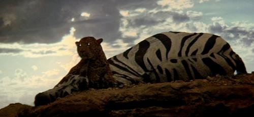 2001 tigre.jpg