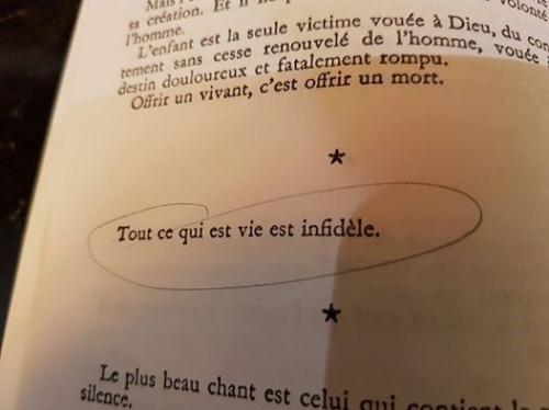 Marie Noël Notes intimes.jpg