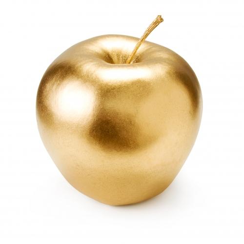 rachel bespaloff,de l'iliade,homère,discorde,pomme d'or,jugement de paris,hélène,hector,achille