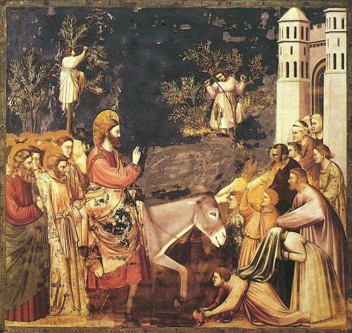 Giotto, entrée du Christ à Jérusalem.jpg